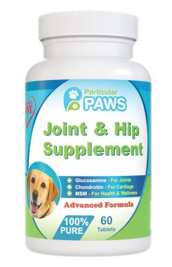 Best Dog Vitamins And Supplements Buyer S Guide Best