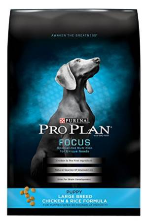 best dog food for lab puppies picture of PEDIGREE PUPPY Targeted Nutrition Chicken Flavor Dry Food For Puppies