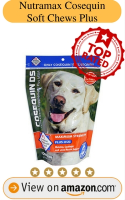 Vitamins and Supplements for Dogs Review