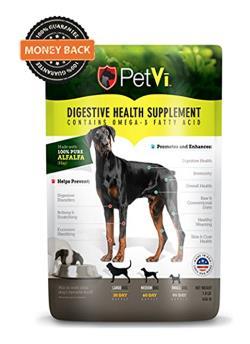 Best Dog Supplements