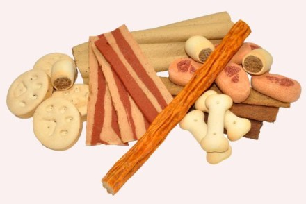 assorted dog treats