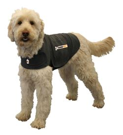 image of thunder jcaket dog anxiety jacket