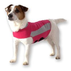 image of dog thunder jacket for dog anxiety